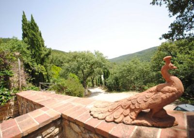 Ferienhaus_Toscana_pavone_4